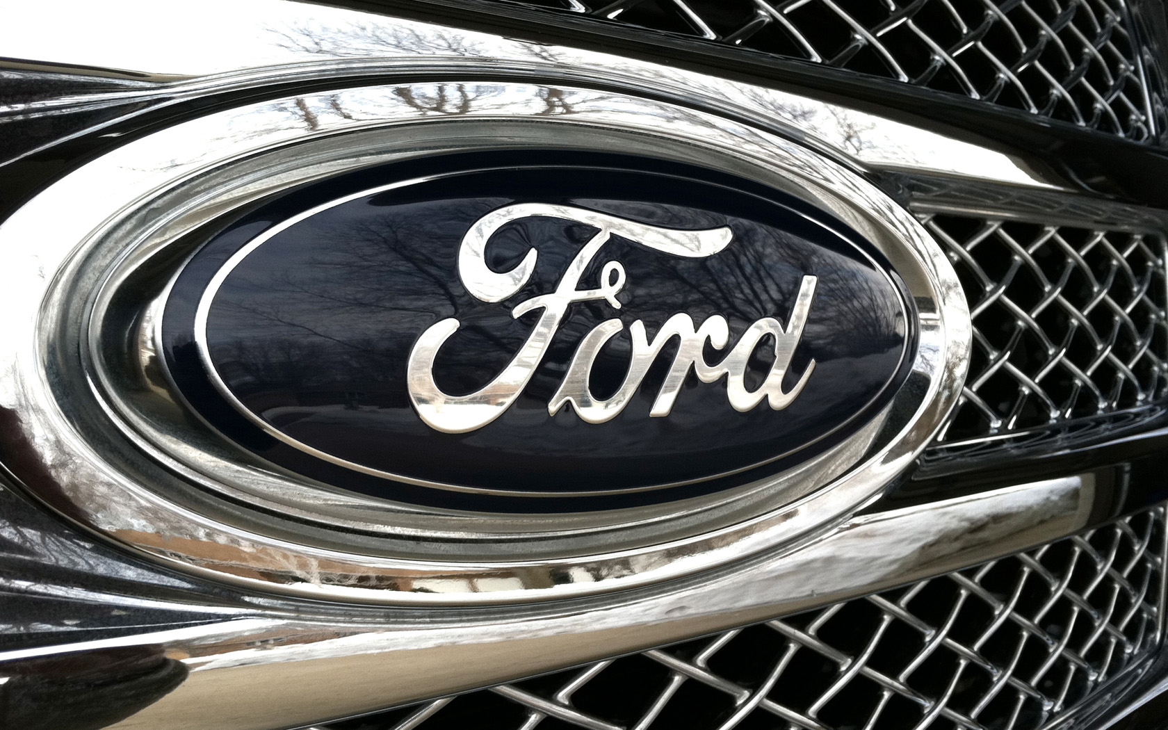 Ford  #14