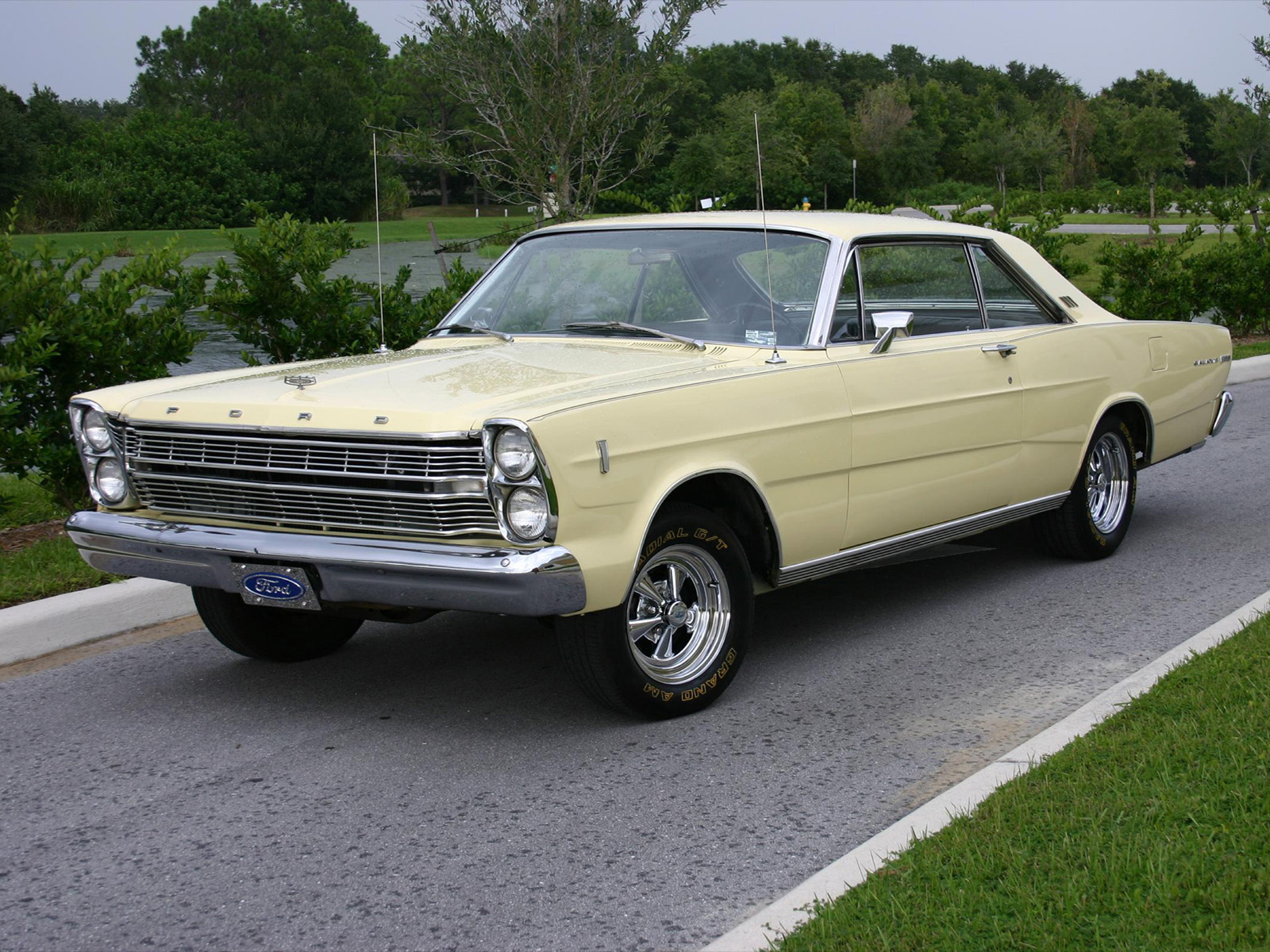 Ford Galaxie #4