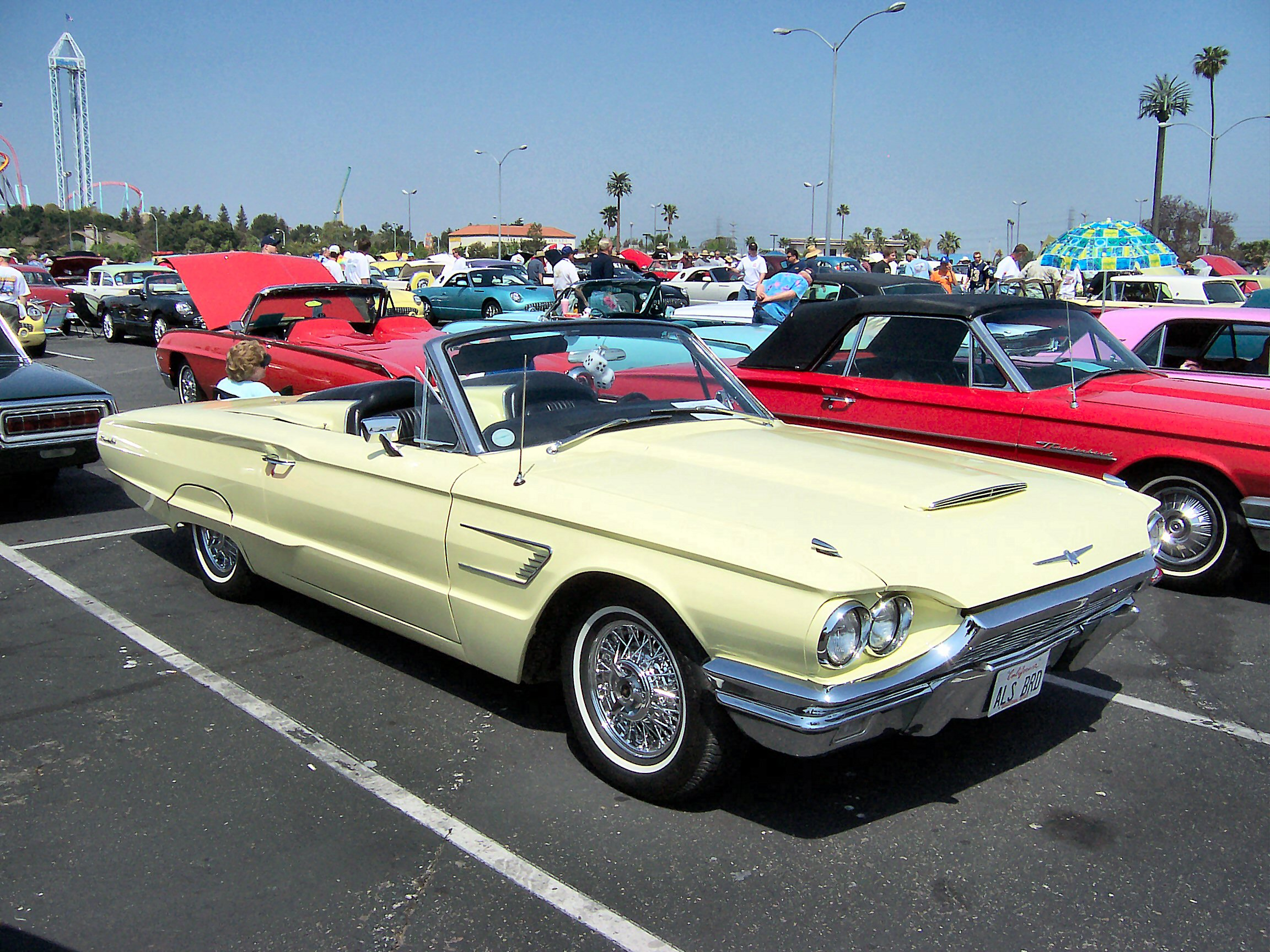 Ford Thunderbird #8