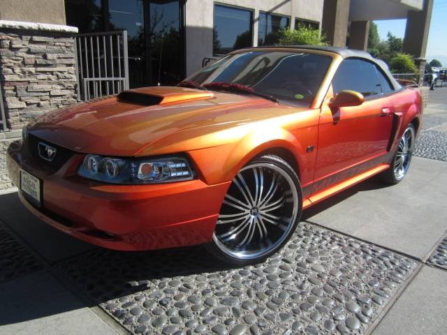 2002 Ford Mustang #13