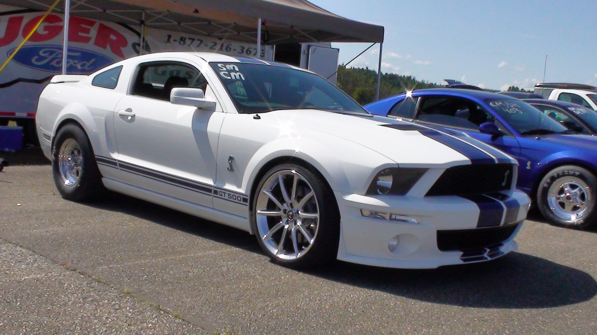 2007 Ford Shelby Gt500 #12