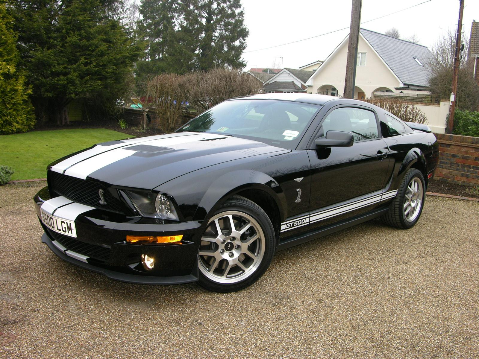 2008 Ford Shelby Gt500 #6