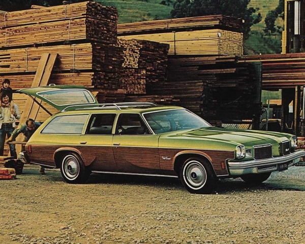 Oldsmobile Vista Cruiser #13