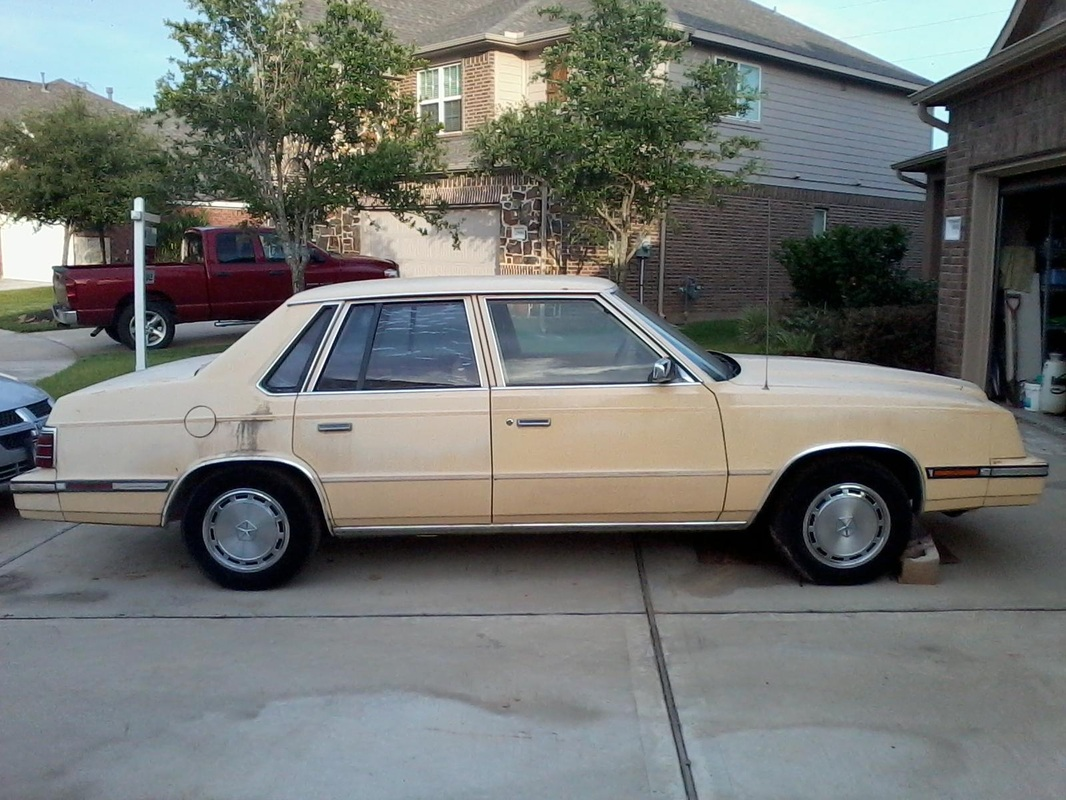 1984 Plymouth Caravelle #10