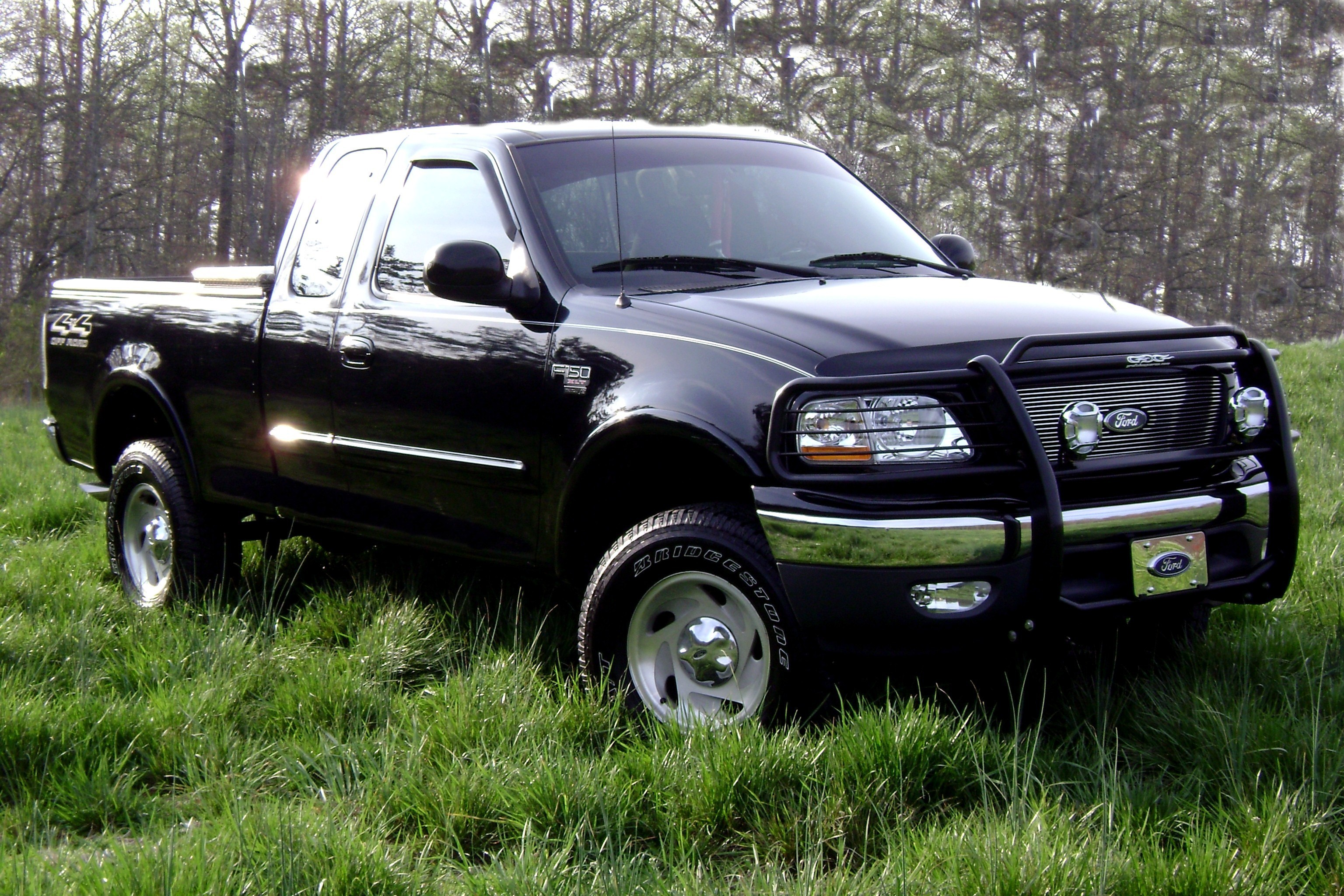 1999 Ford F-150 #7