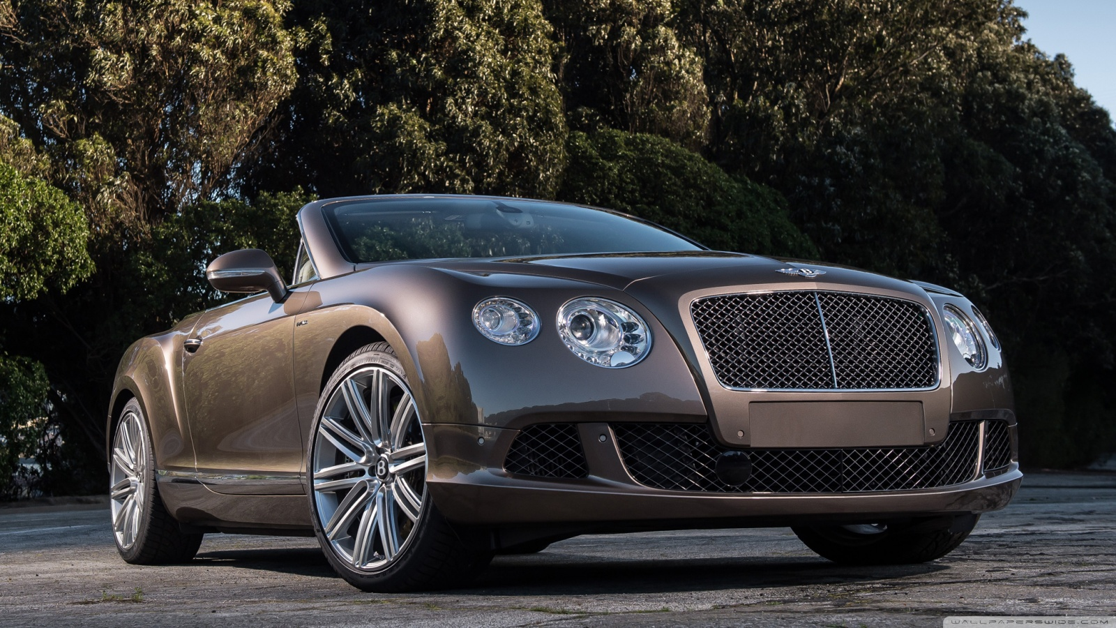 2014 bentley continental gt speed convertible photos informations. Cars Review. Best American Auto & Cars Review