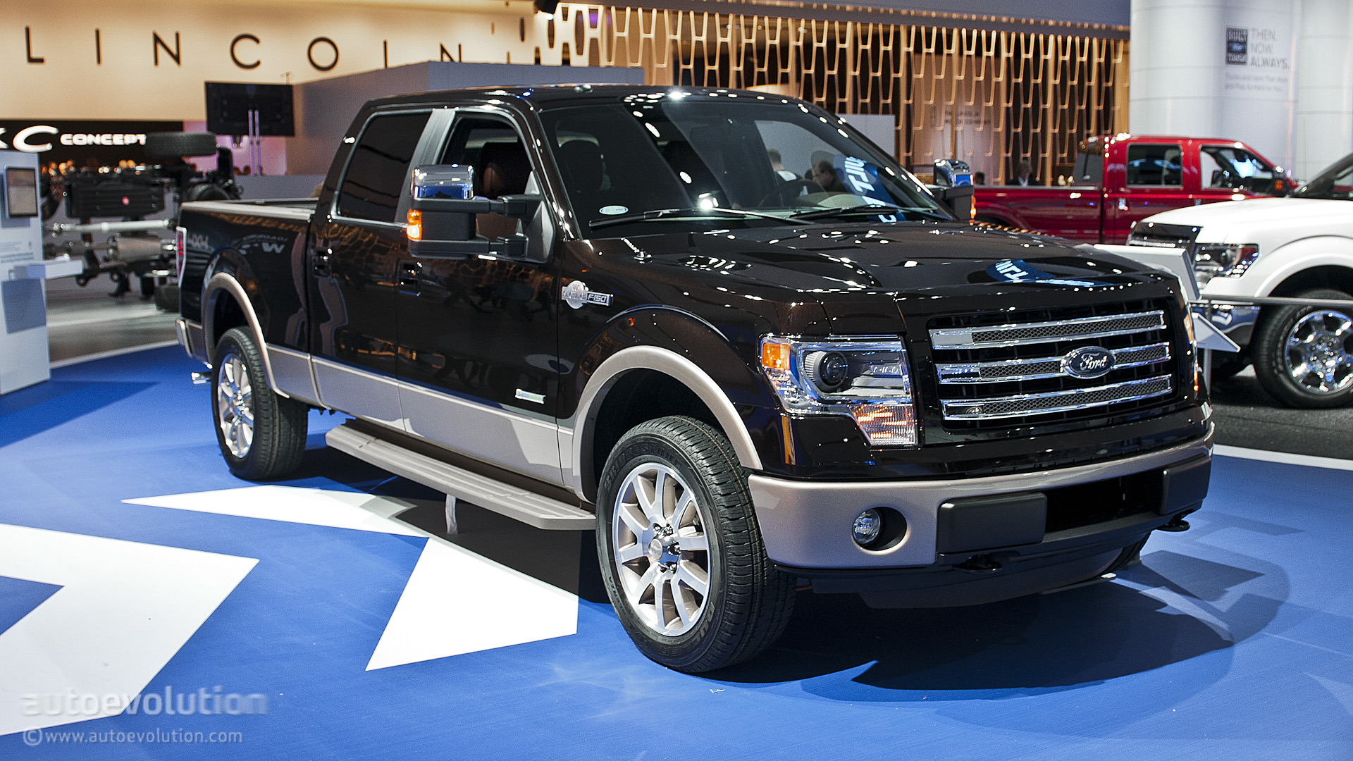 2013 Ford F-150 #16