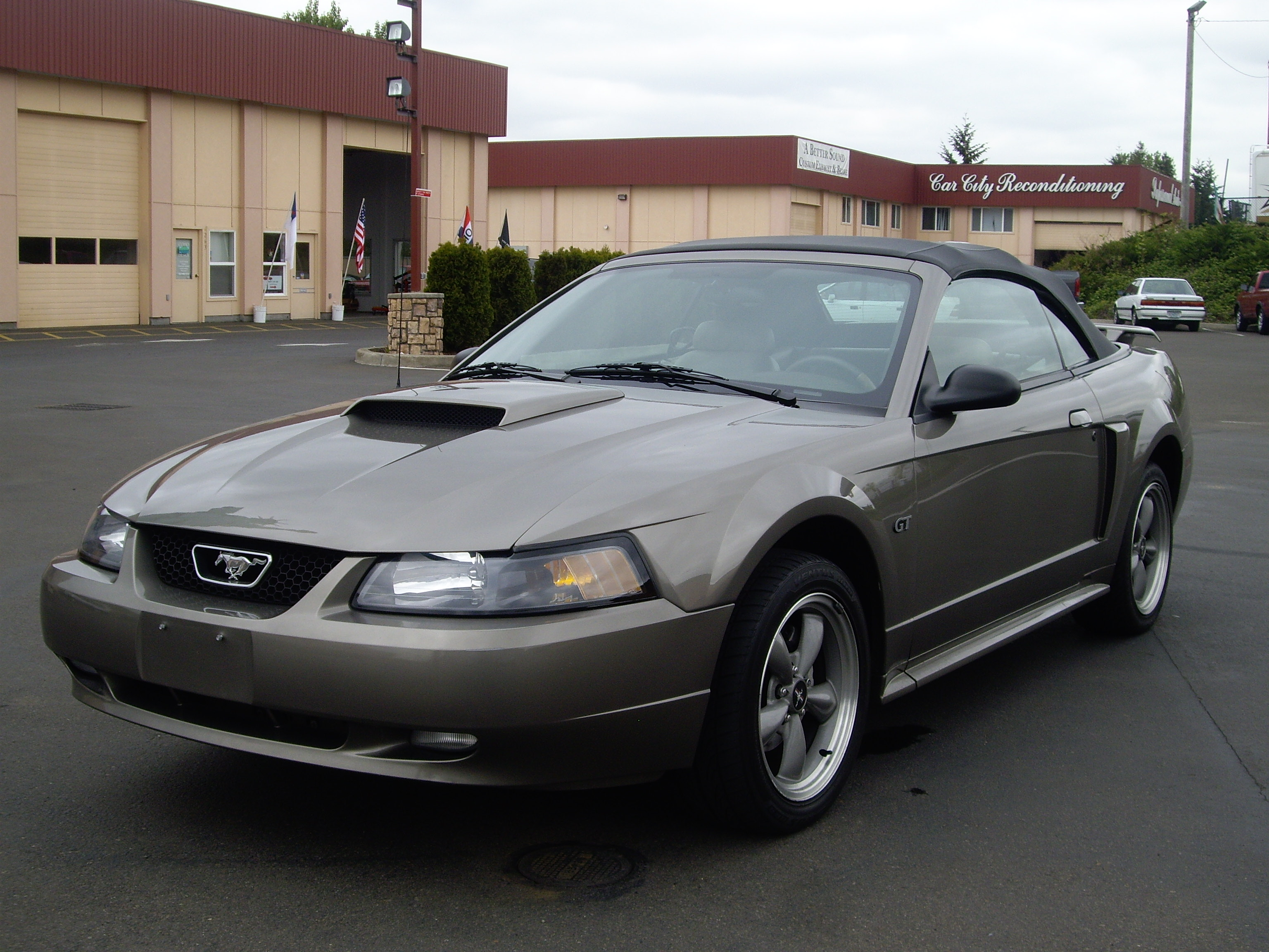 2002 Ford Mustang #11