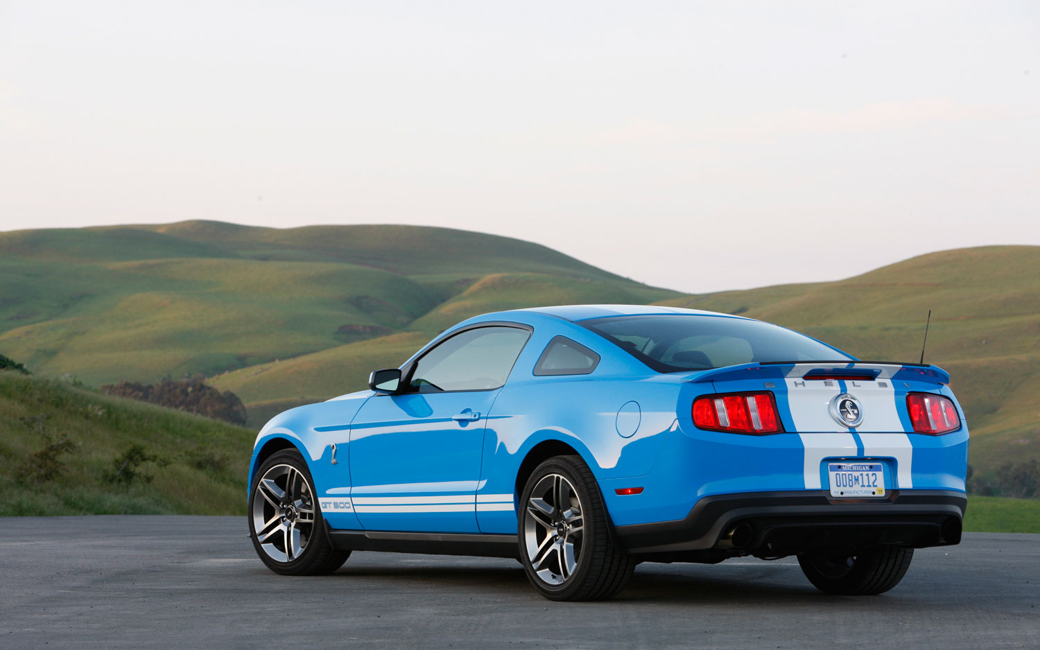 2010 Ford Shelby Gt500 #10