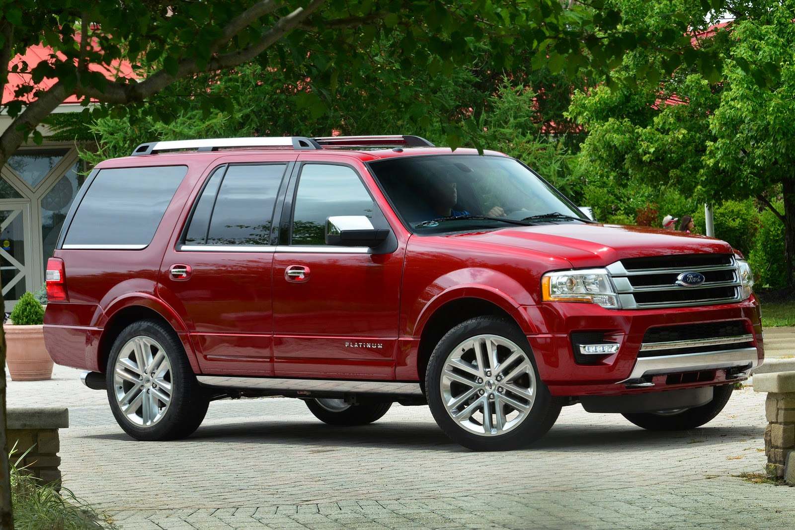 2015 Ford Expedition #10