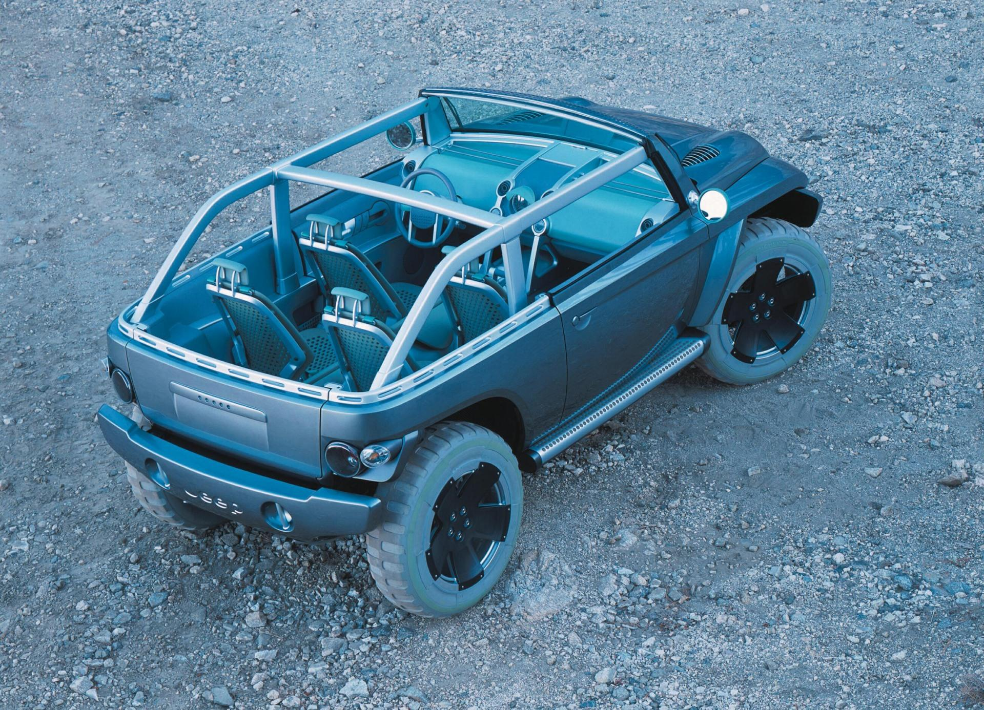 2001 Jeep Willys #14