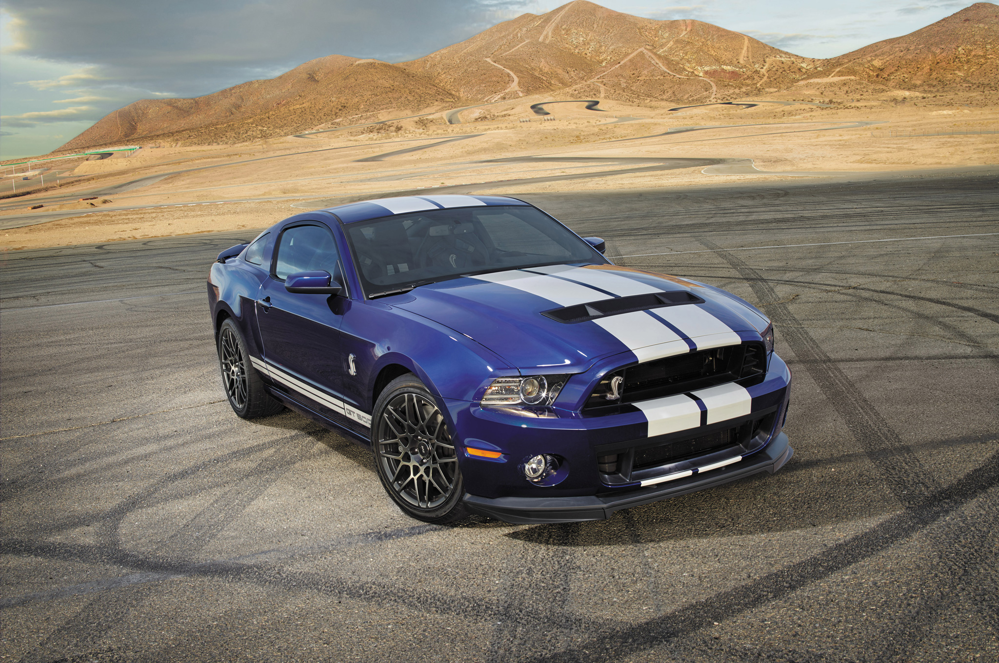 2014 Ford Shelby Gt500 #2