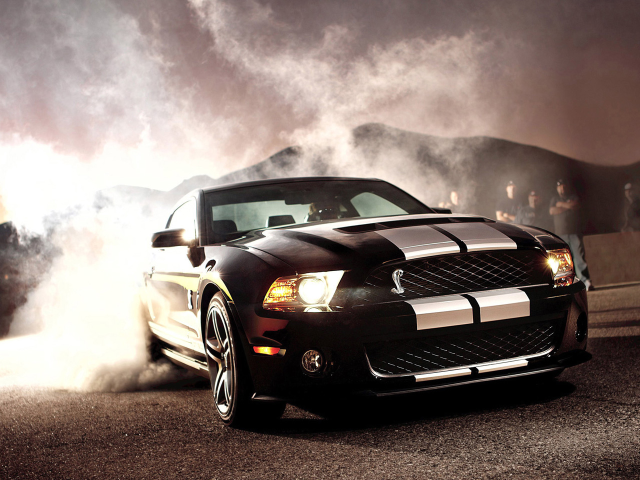 2012 Ford Shelby Gt500 #10