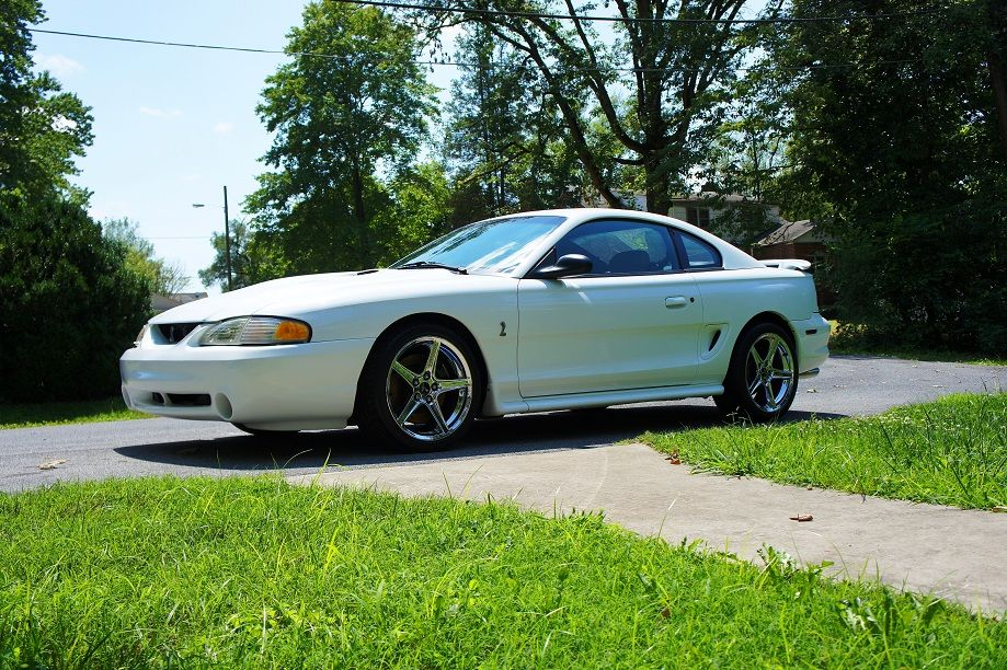 1996 ford mustang svt cobra photos informations articles. Black Bedroom Furniture Sets. Home Design Ideas