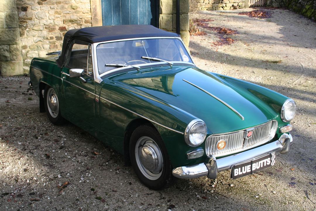 Mg midget weigh, smallest pussy vol