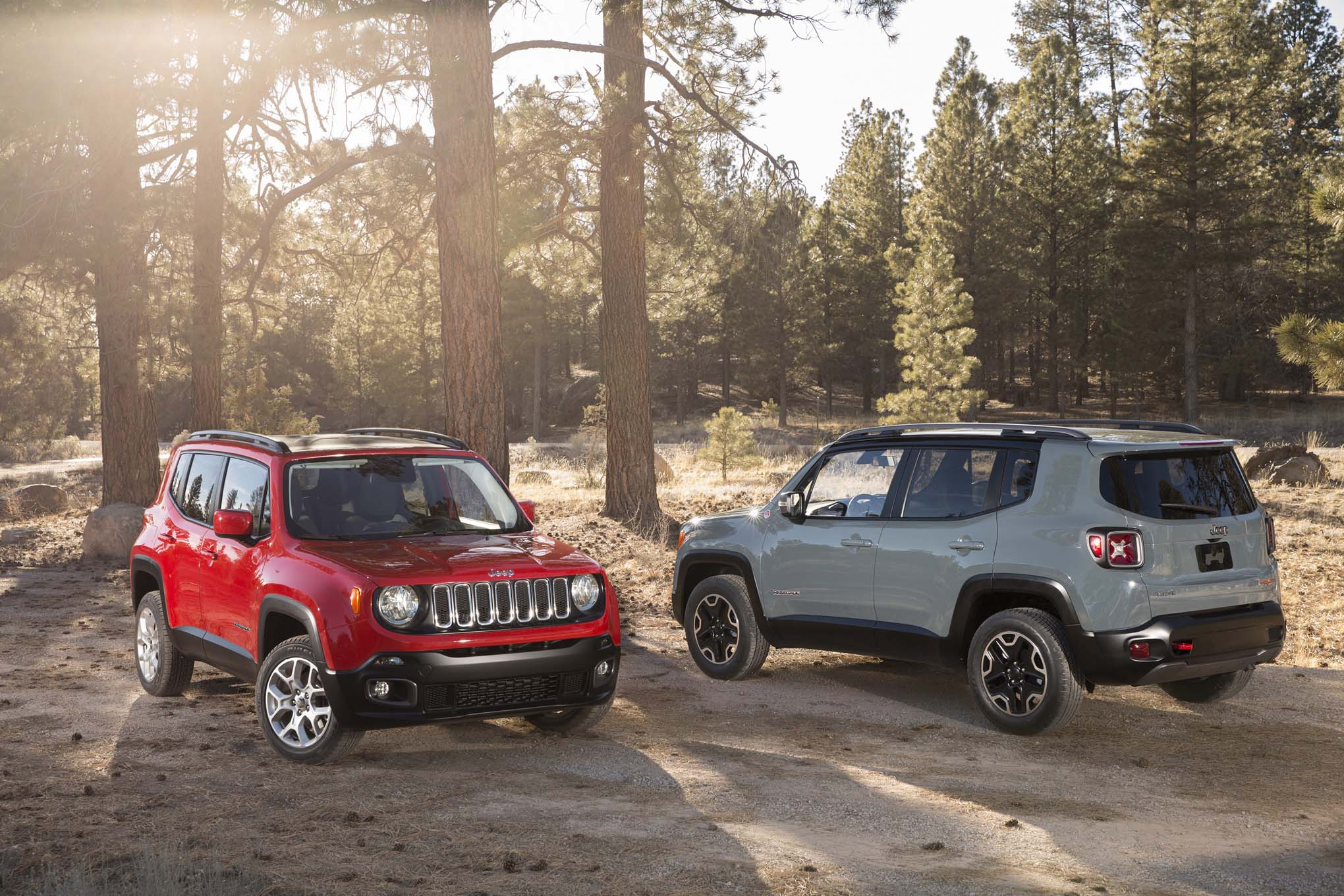 2015 Jeep Renegade #7