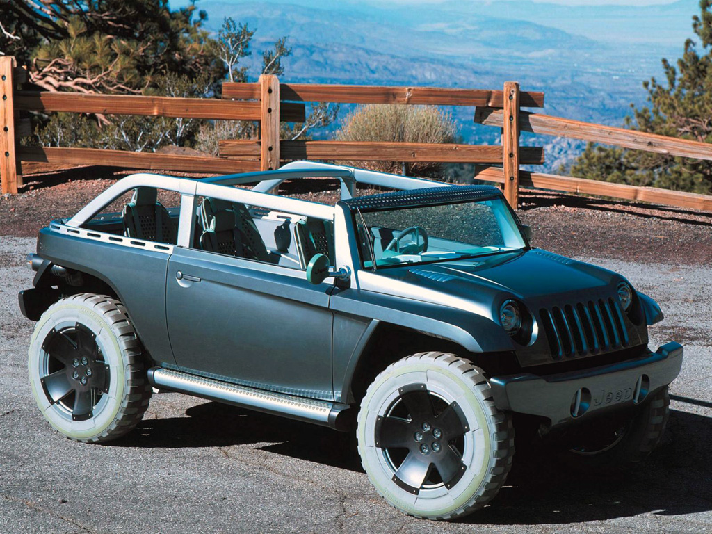 2001 Jeep Willys #5