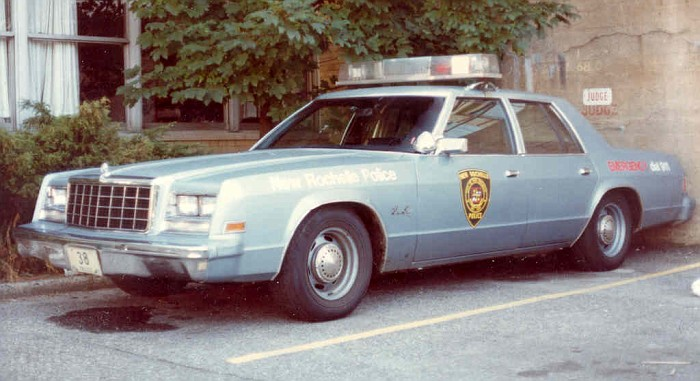 1981 Plymouth Gran Fury #6