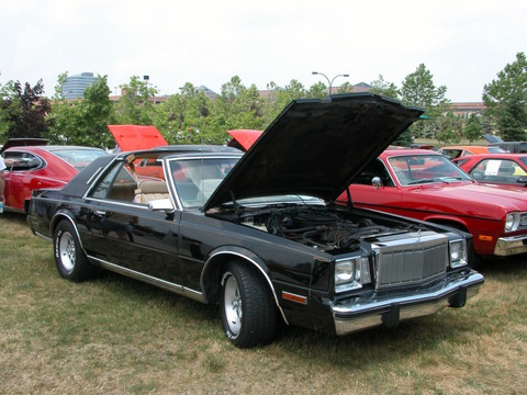 1982 Chrysler Cordoba #16