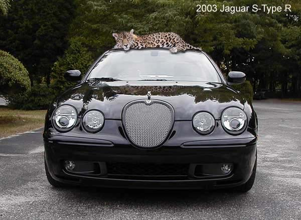 2003 Jaguar S-type #13