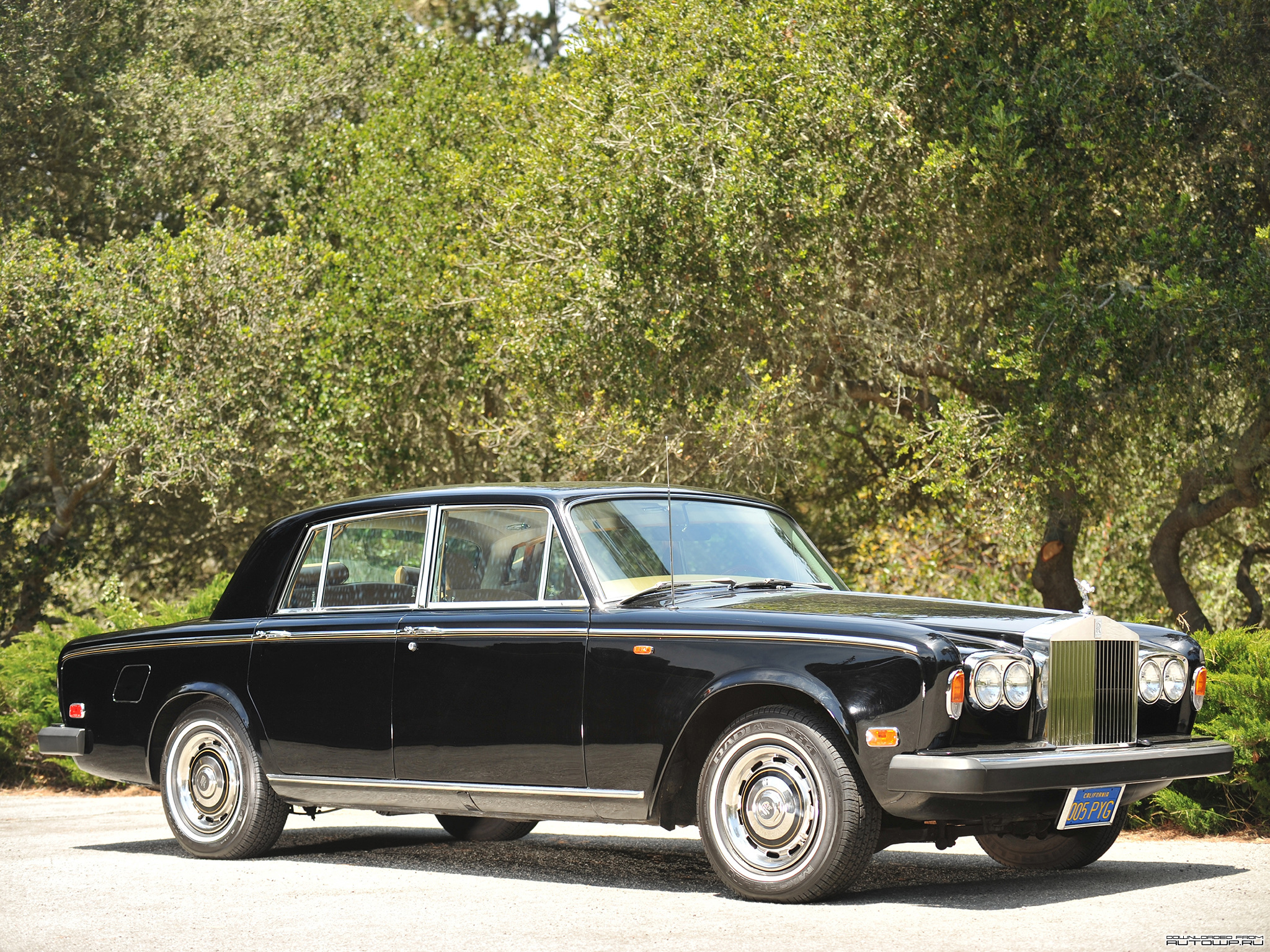Rolls royce Silver Shadow #12