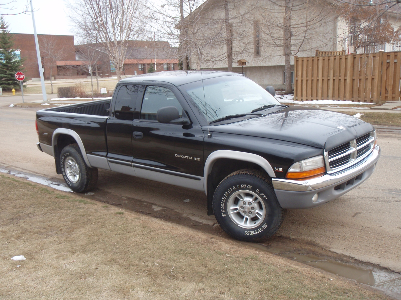 1998 Dodge Dakota #4