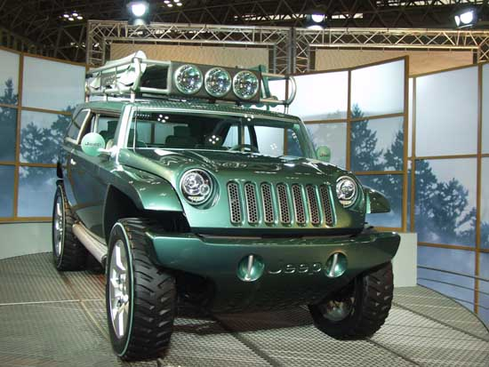 2001 Jeep Willys #13