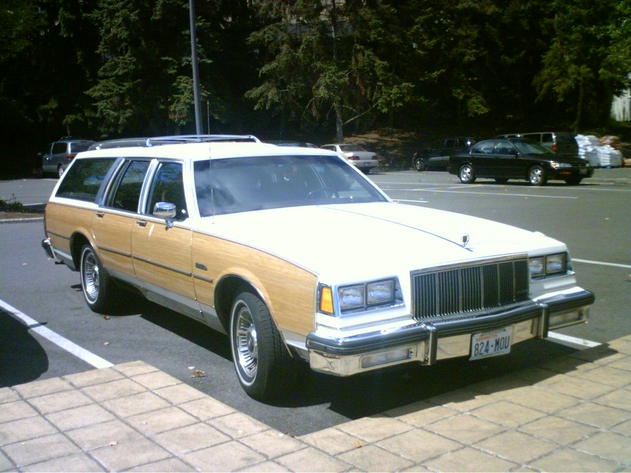 Buick Estate #8