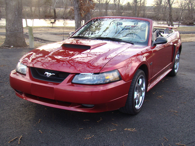 2003 Ford Mustang #18