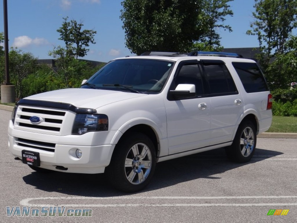 2010 Ford Expedition #10
