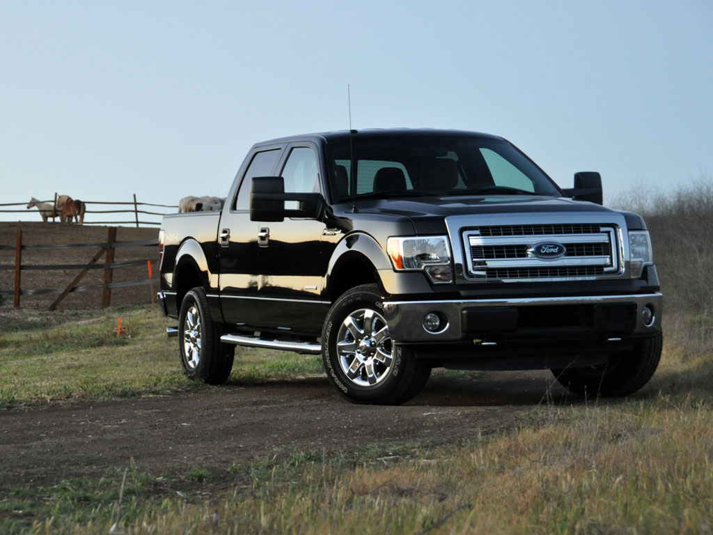 2013 Ford F-150 #10