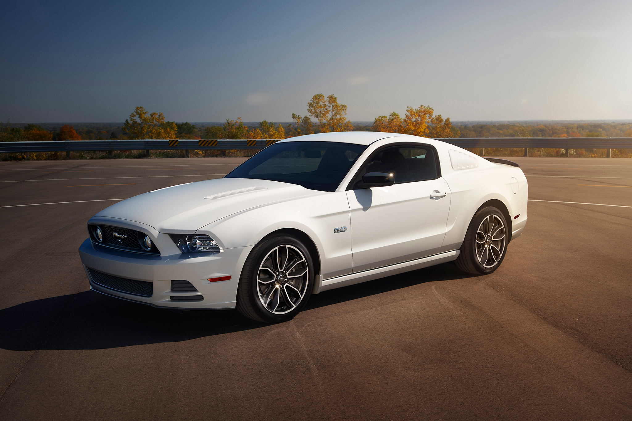 2014 Ford Mustang #13