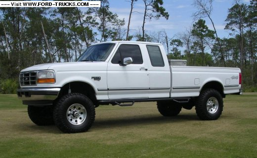 1995 Ford F-250 #2