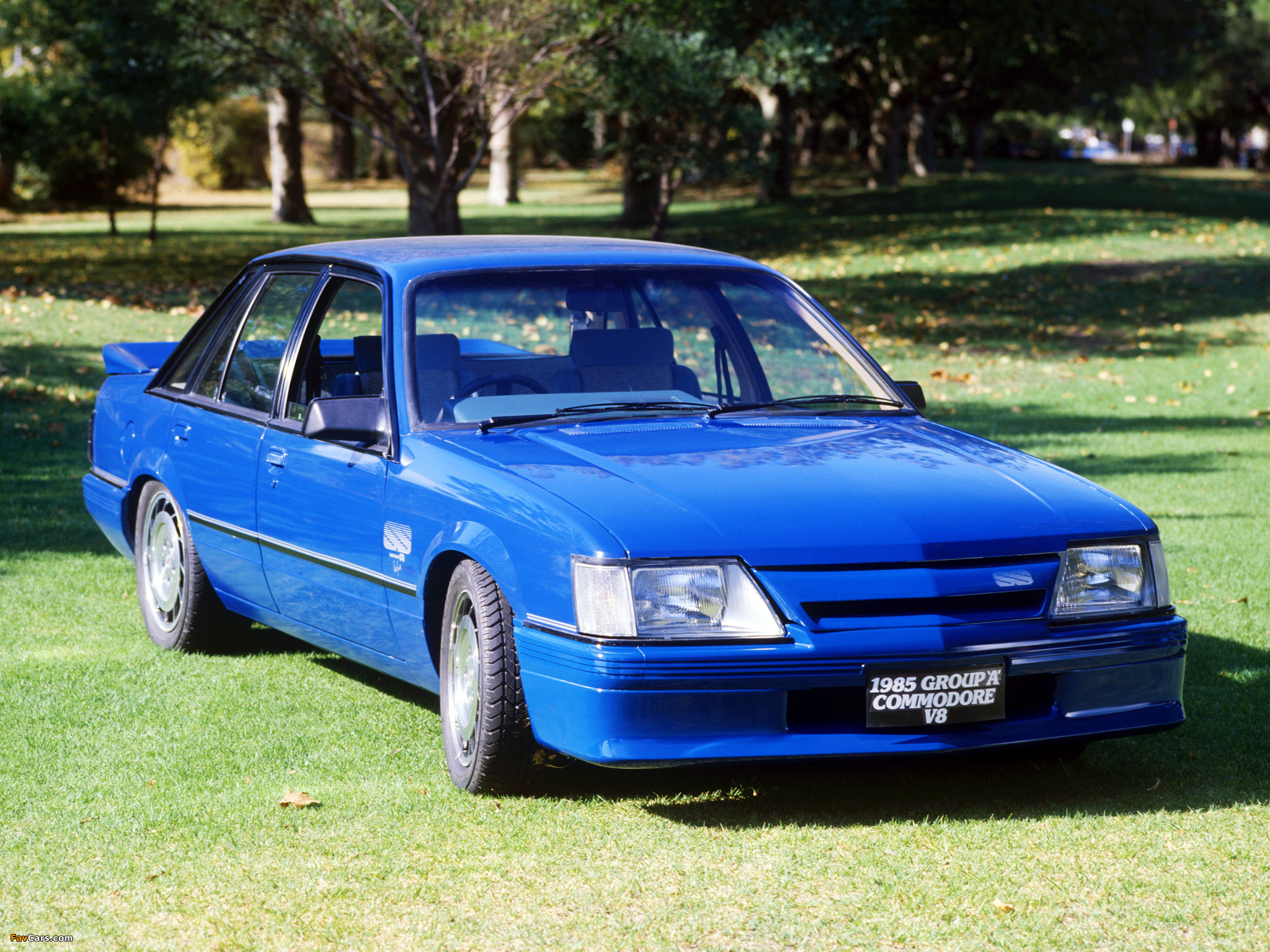 1985 Holden Commodore #2