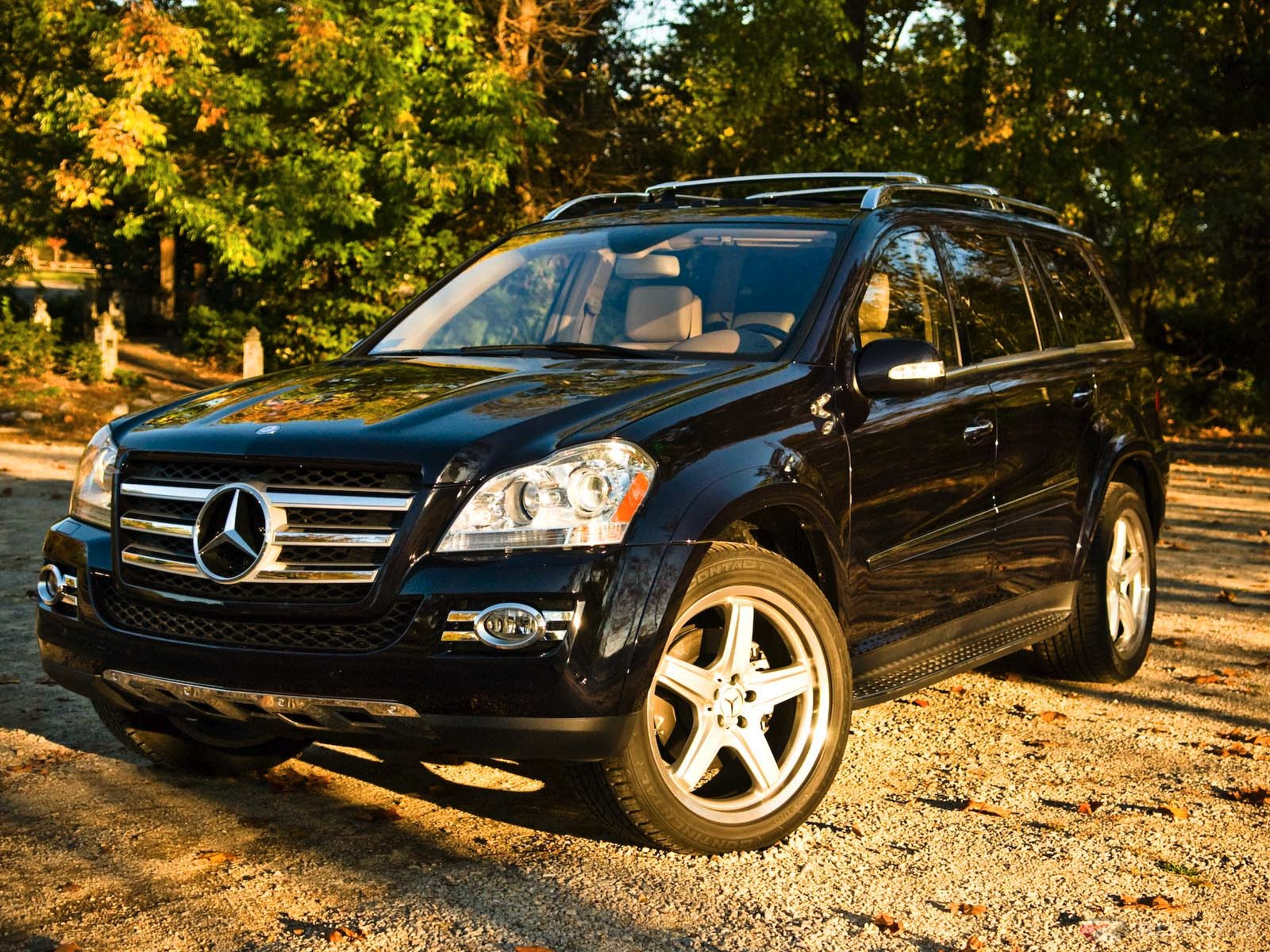 2008 Mercedes-Benz GL #5