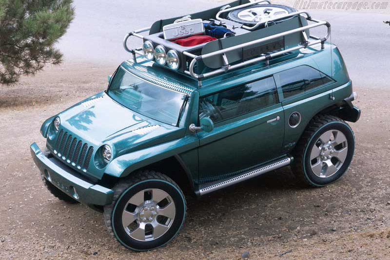 2001 Jeep Willys #6