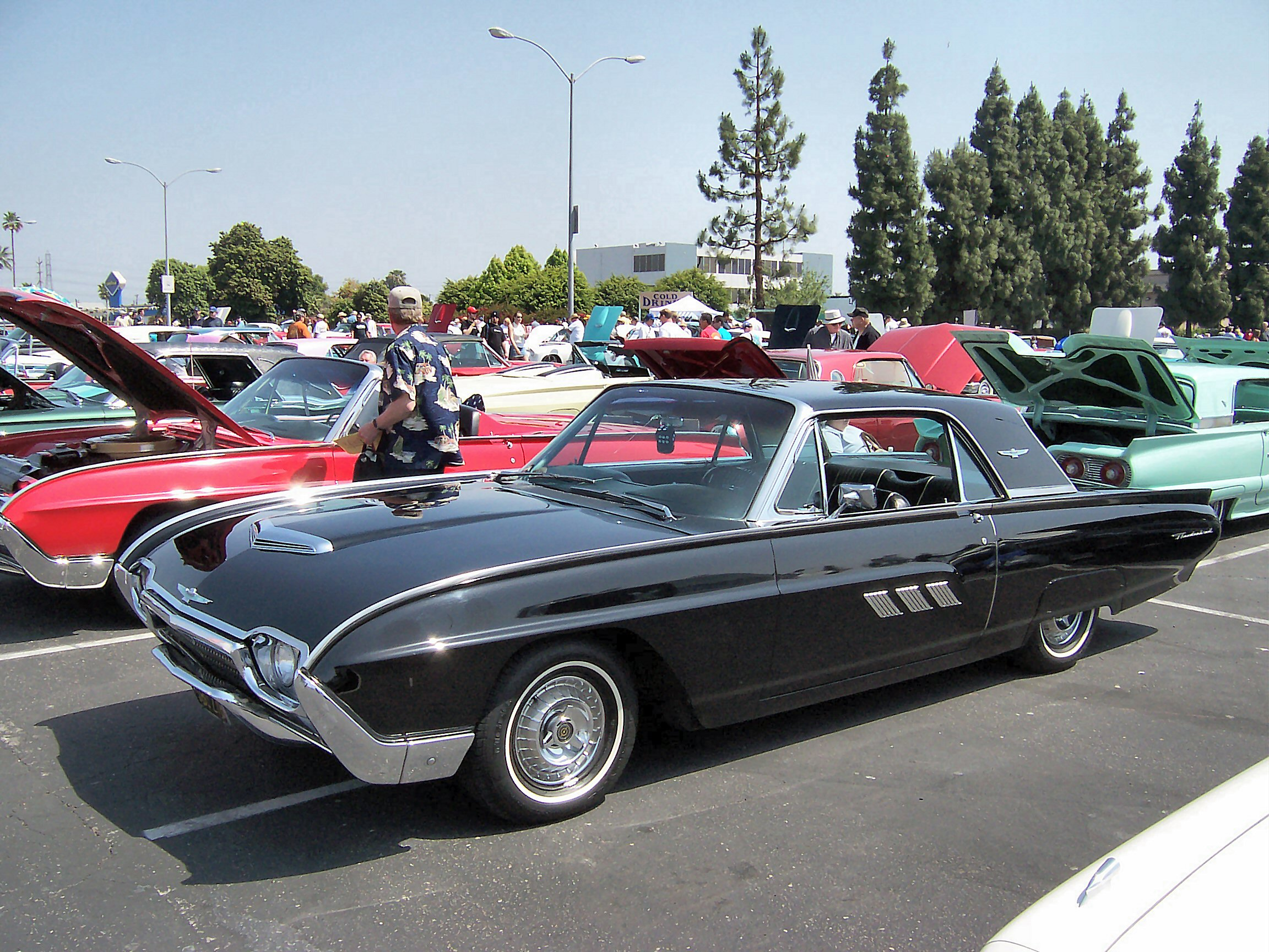 Ford Thunderbird #9