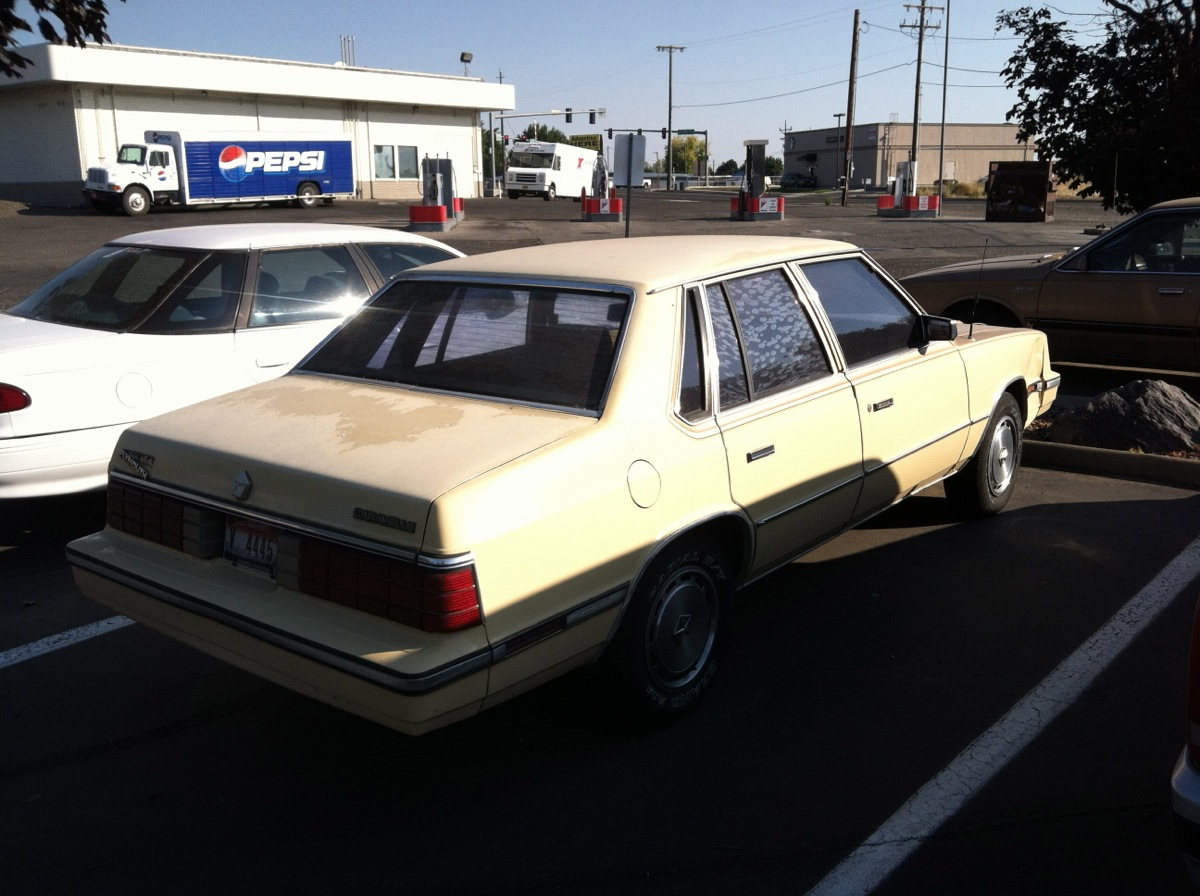 1986 Plymouth Caravelle #11