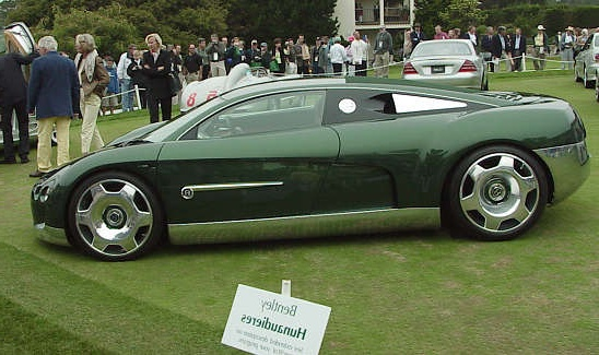 1995 Bentley Java #11
