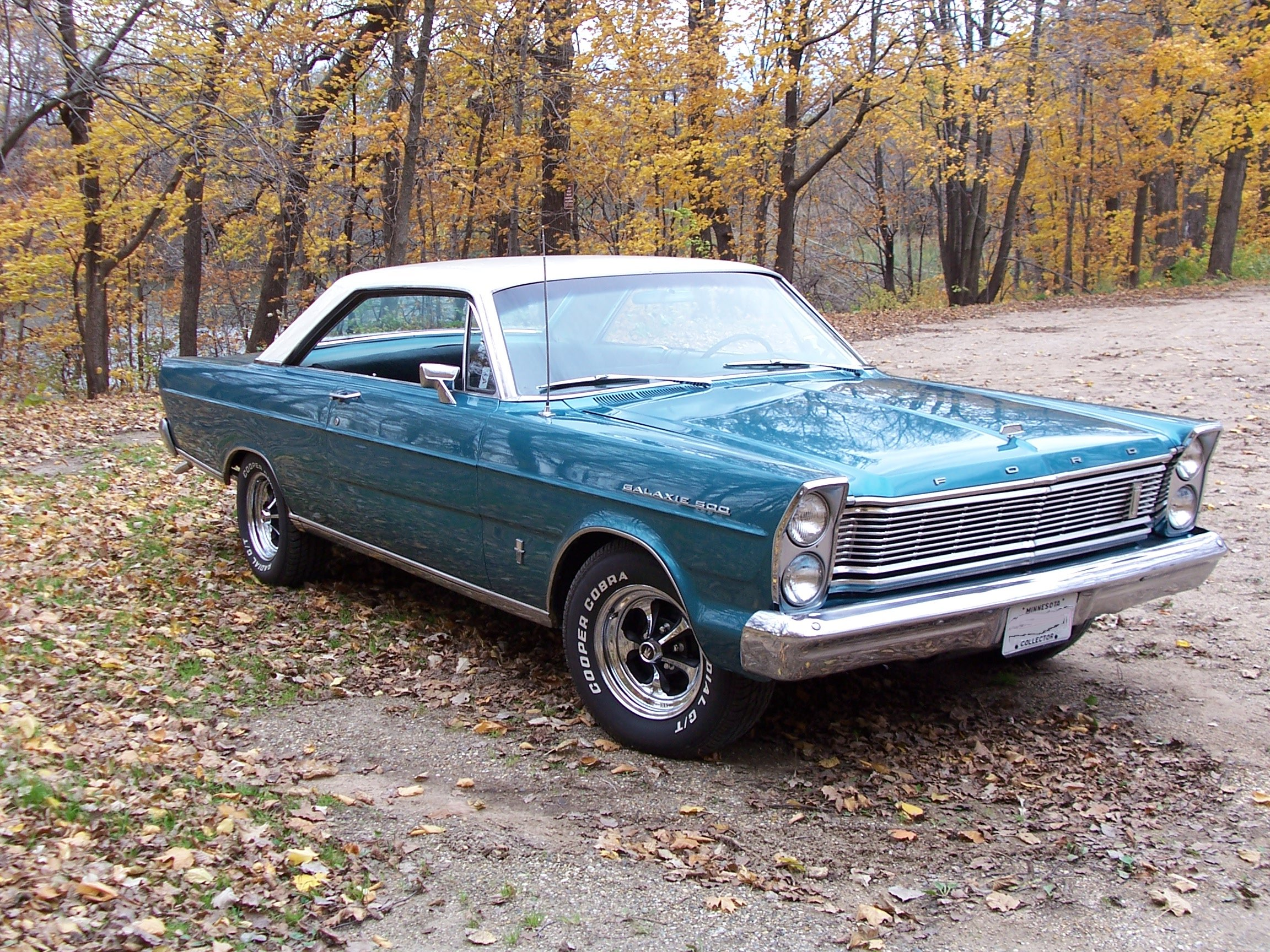 Ford Galaxie #10