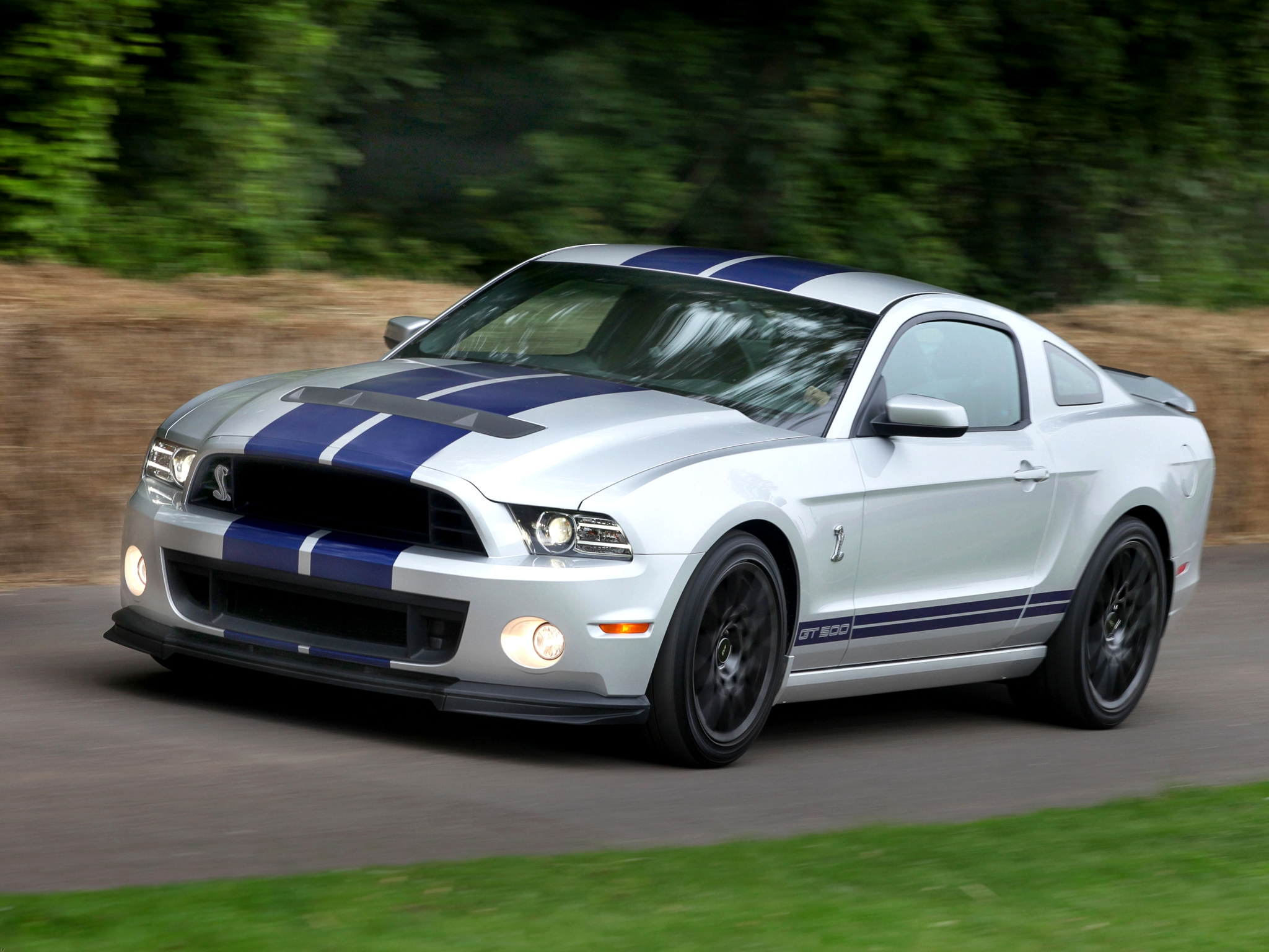 2012 Ford Shelby Gt500 #6