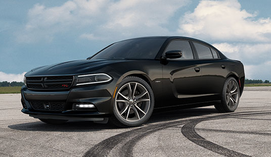 Dodge Charger #22