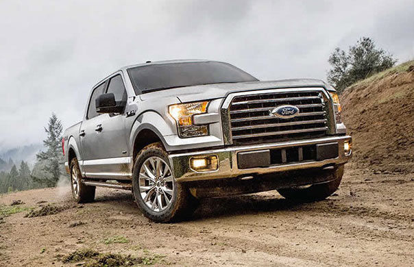 Ford F #21