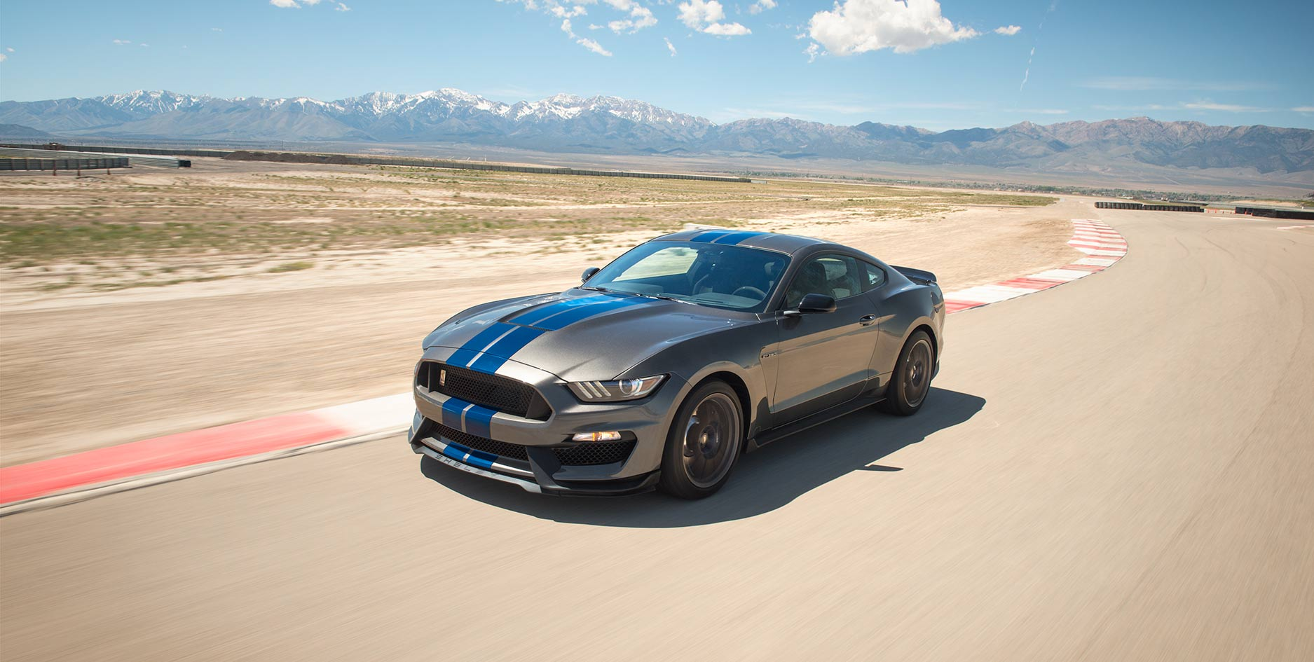 Ford Shelby Gt350 #11