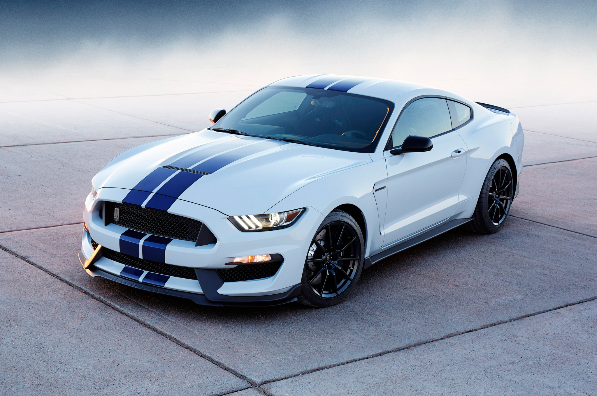 Ford Shelby Gt350 #3