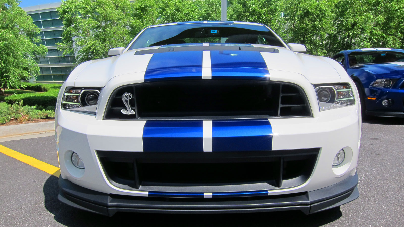 Ford Shelby Gt500 #23
