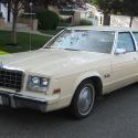 1981 Plymouth Gran Fury #1