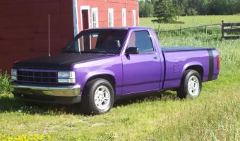 1995 Dodge Dakota #1