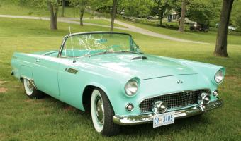 Ford Thunderbird #1